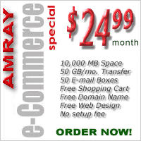 AMRAY Web Hosting - e-Commerce Special